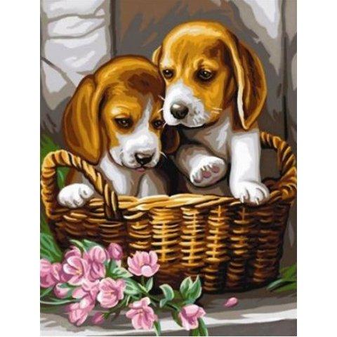 KSG Craft - Рисуване по номера с акрилни бои - Кученца в кошница