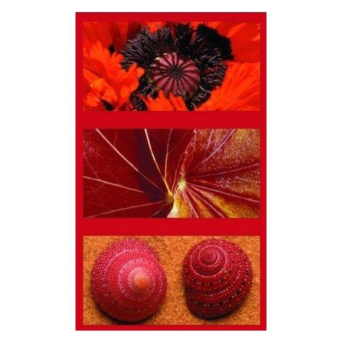 Ravensburger - Пъзел 3Х500 елемента Природна импресия в червено