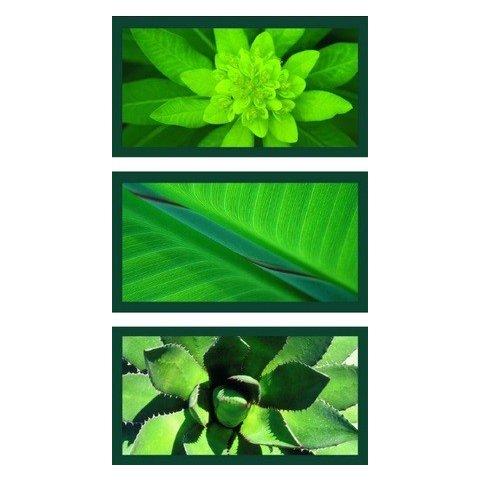 Ravensburger - Пъзел 3Х500 елемента Природна импресия в зелено