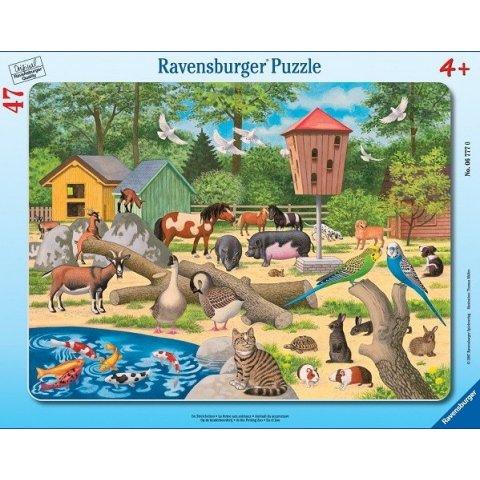 Ravensburger - Пъзел 30-48 елемента Зоопарк