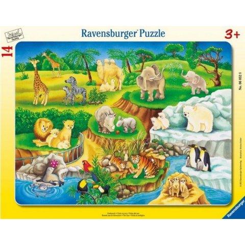 Ravensburger -  Пъзел 8-17 елемента  В зоопарка