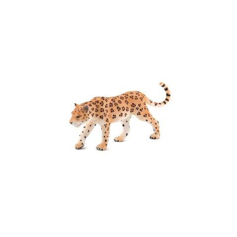 Mojo Animal Planet  - 387018