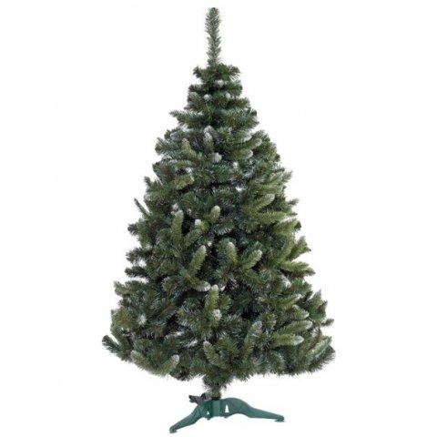 Коледна елха с бял връх - Бор - 250см