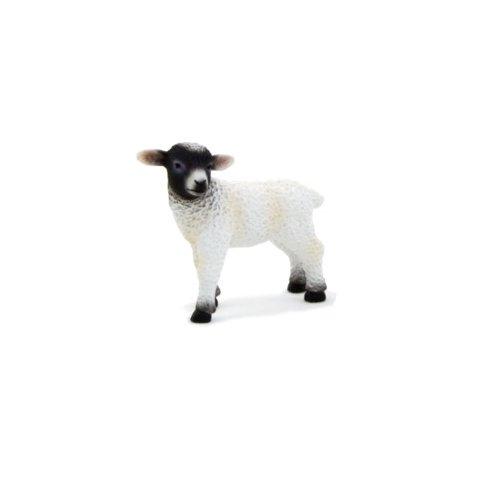 Mojo Animal Planet - 387059
