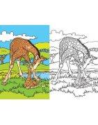 Детски книжки за оцветяване